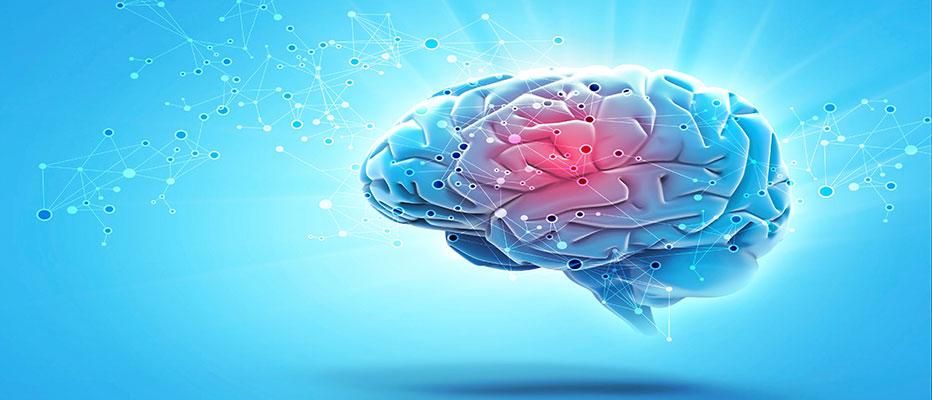 Neurocoaching virker det